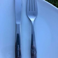 Classic vinatage cyprus airways cabin fork and knife