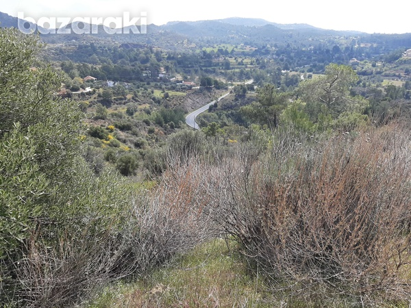 Land for sale-11