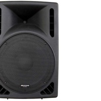 Professional 15 inch active speaker