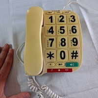 Home landline phone with large numbers