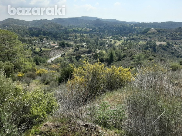 Land for sale-8