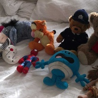 Miscellaneous cuddly toys, διαφορα αρκουδακια ολα μαζι