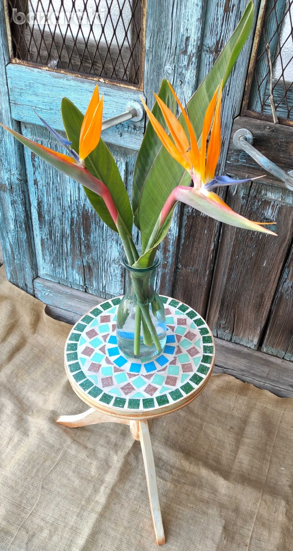 Round mosaic table top.-3