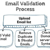 Will do bulk email validation, bulk email verification for you