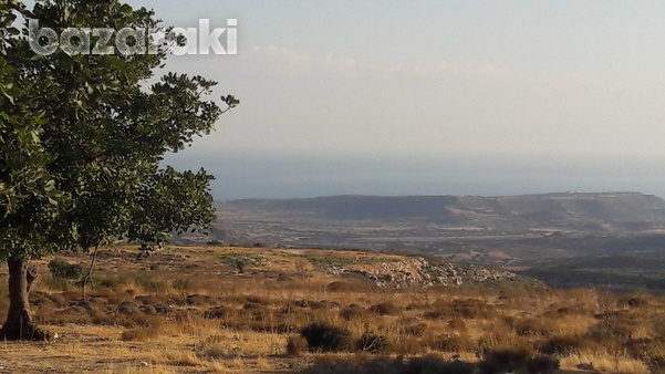 Land for sale-3