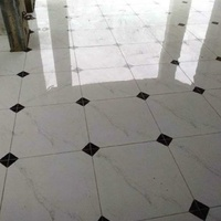 Master in tiling and construction