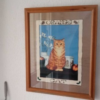 An american lithograph of an orange cat with frame.