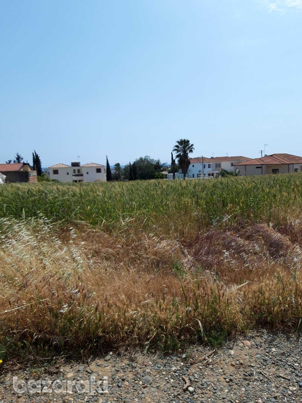 Residential land in mazotos village suitable for development with sea view-4