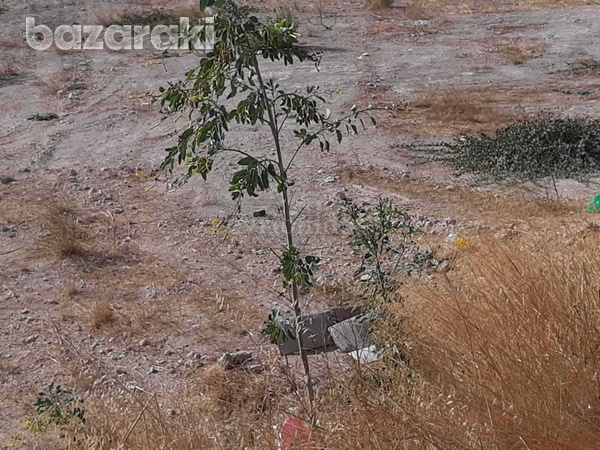 Commercial plot of land in agios athanasios-8