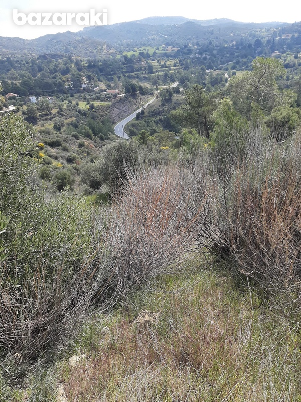 Land for sale-10