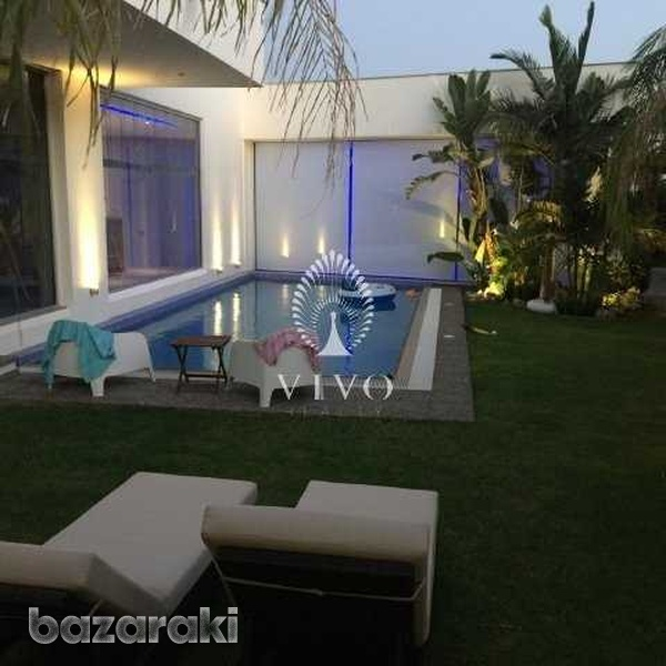 Magnificcent and modern minimal fully furnished villa in palodeia-2