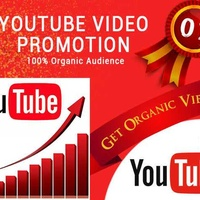We will do organic youtube promotion of your video