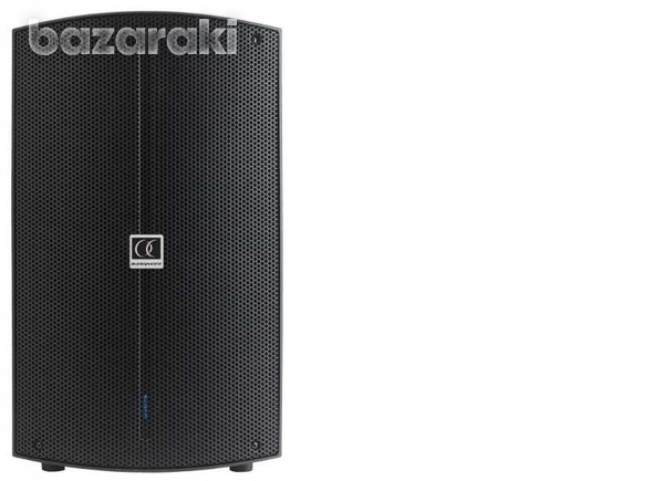 10inch 300w speaker with dsp-1
