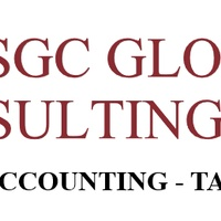 Accounting, taxation and audit services
