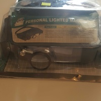 Personal lighted magnifier