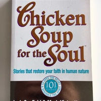 Chicken soup for the soul by j canfield and m v hansen