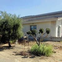 New 4 bed room bungalow with 3695 sq.m. land