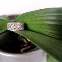 Olive tree ring, fine silver with zirconia stones.