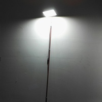 Telescopic rod led light for outdoor camping fishing