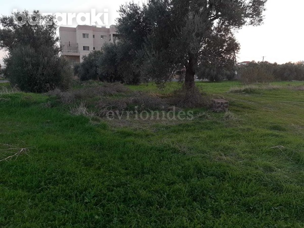 Residential land in ypsonas area-4