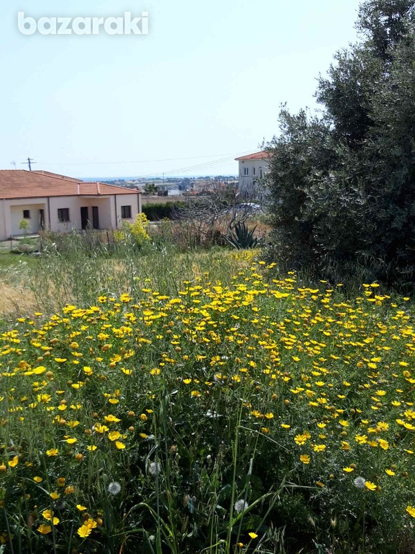Residential land in mazotos village suitable for development with sea view-7