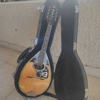Brand new professional madolin with hard case