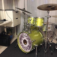 Sonor maple shell