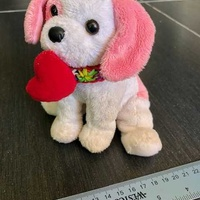 Adorable dog in a stylish necklace holding a red heart